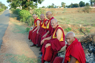 Elderly monks from the local monastery rest at the entrance to the pongamia plantation.