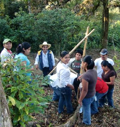 Alumnos practicando lineas crop